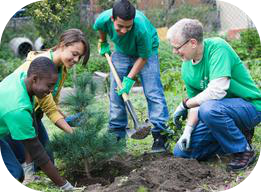 Older person planting trees with children as part of a volunteer activity.